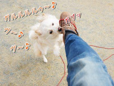 20140303_3.jpg