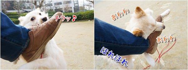 20140303_4.jpg