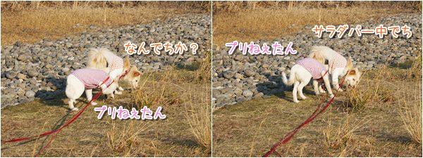 20140319_1.jpg