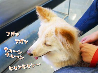 20140320_2.jpg