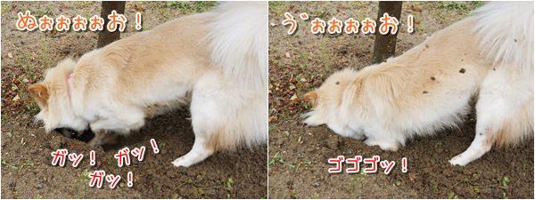20140328_2.jpg