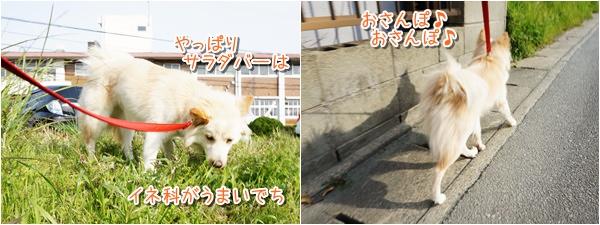 20140410_1.jpg
