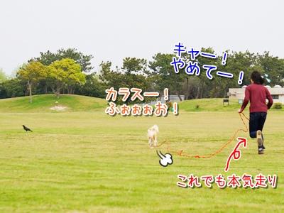 20140422_5.jpg