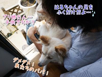 20140516_6.jpg