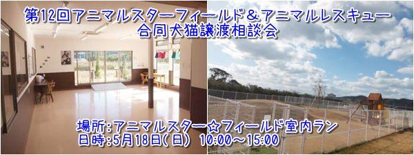 20140517_6.jpg