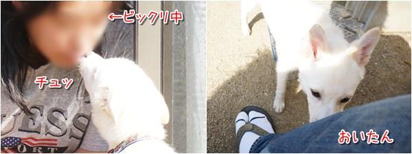 20140521_8.jpg
