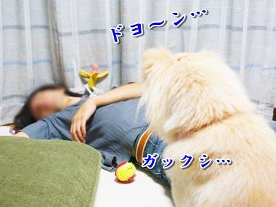 20140711_5.jpg