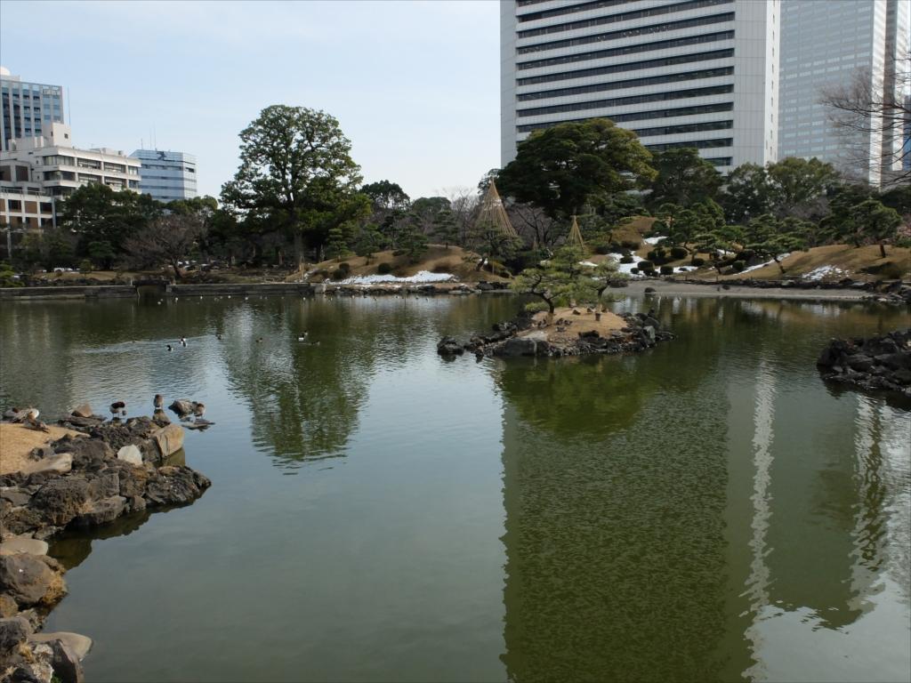 池は素晴らしい景観に仕上がっている感じだ