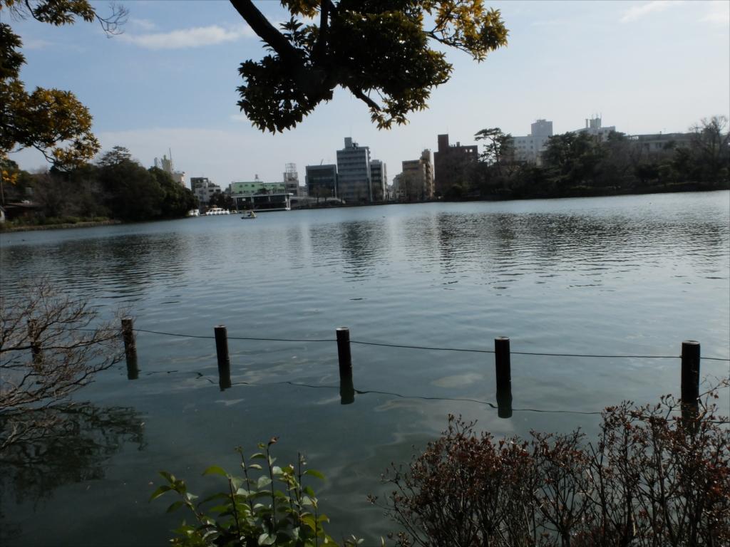 弁天島からボートハウス&洗足池方面をみると