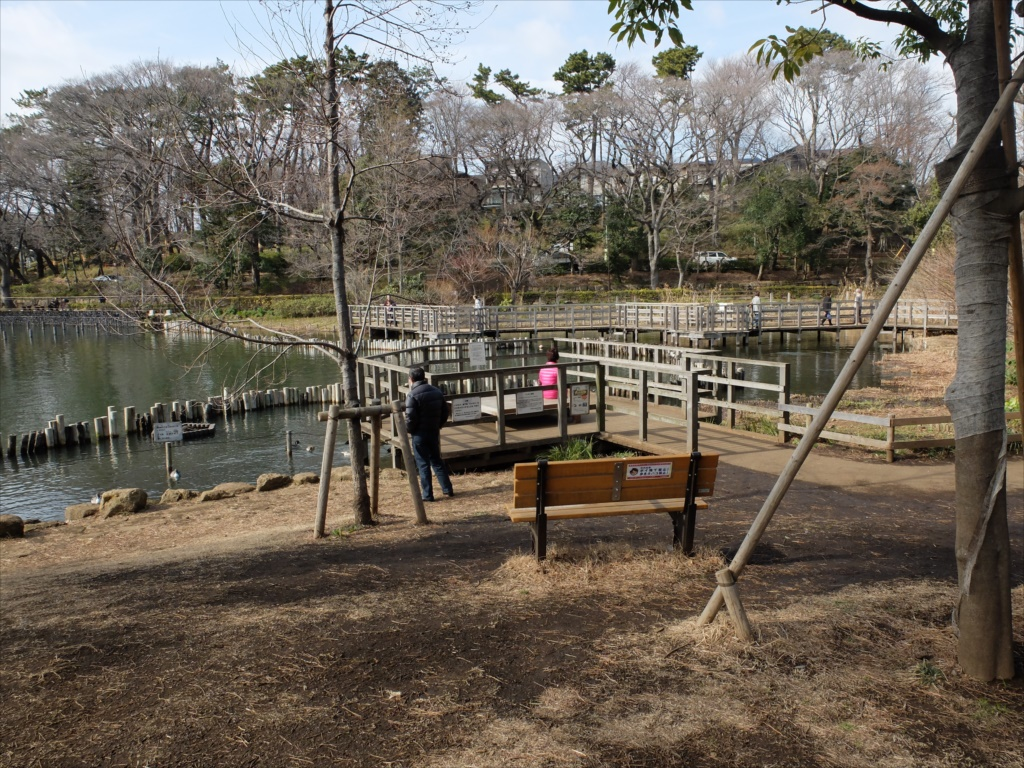 木橋を歩きながら_2
