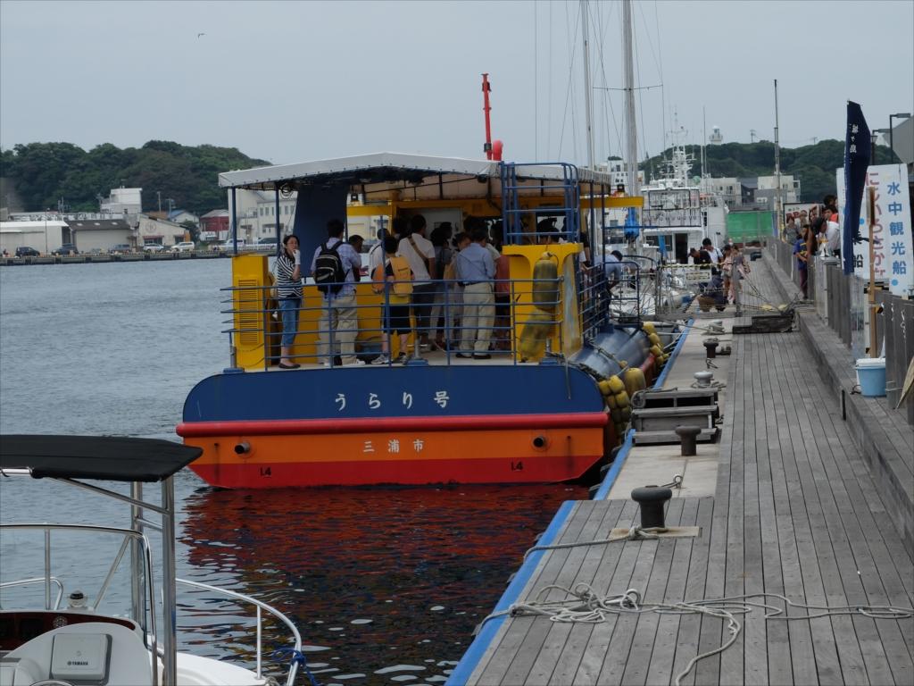 宮川湾海中散歩にじいろさかな号_1