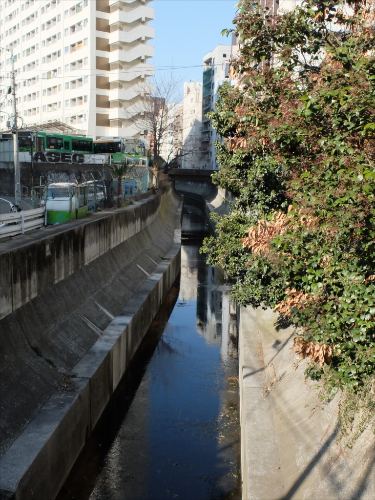 比丘橋のしたを流れる渋谷川
