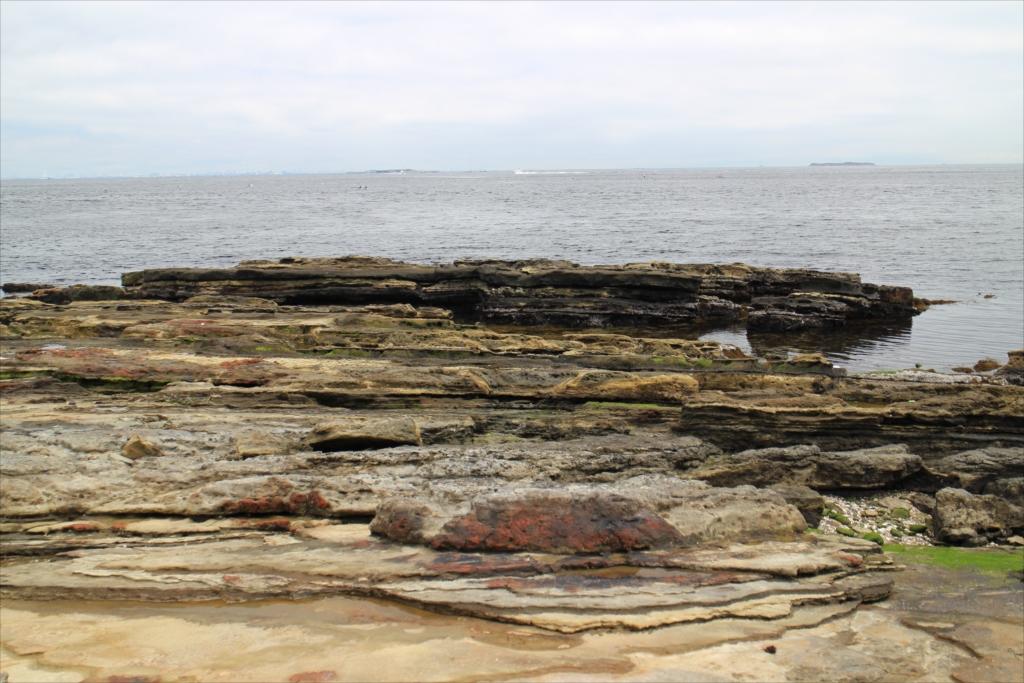 三浦半島にはこういう岩礁が目立つ_2