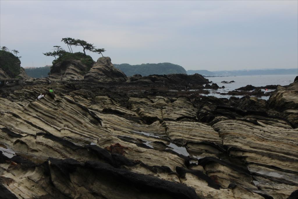 見事な海蝕台_6