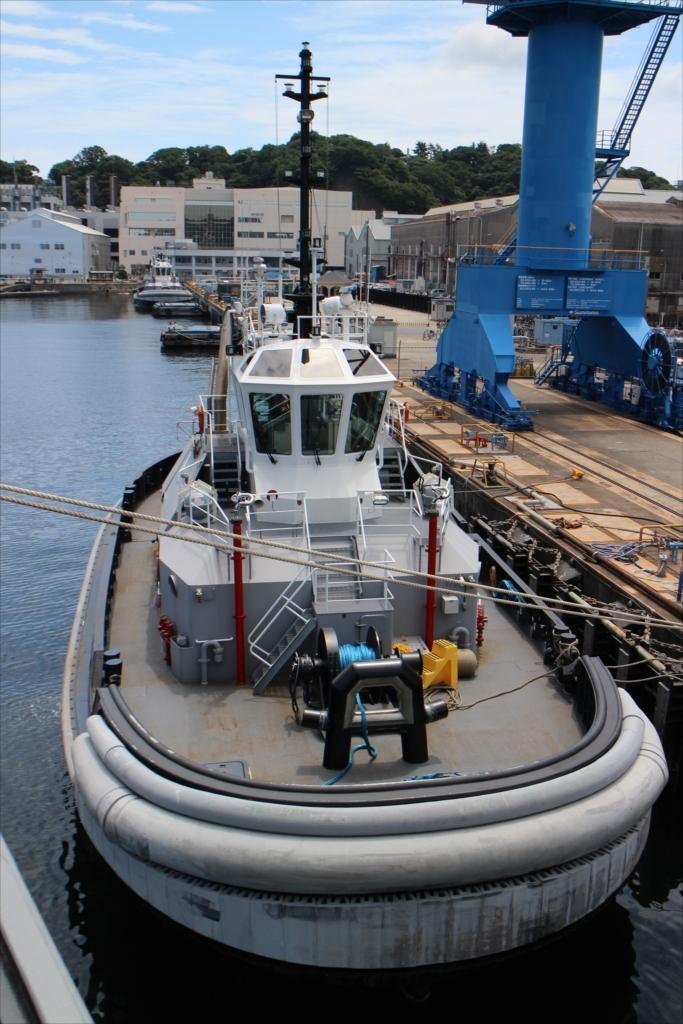 船首のすぐ前にはタグボートが
