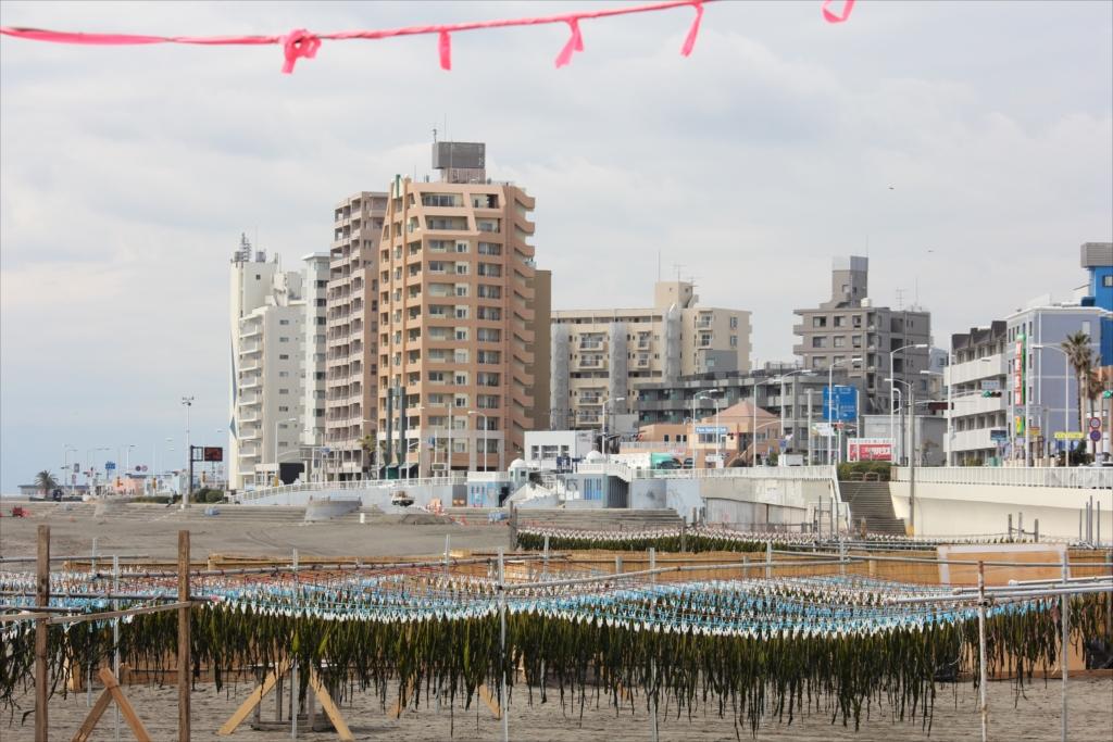 ワカメが鎌倉市で高層建物が藤沢市_2