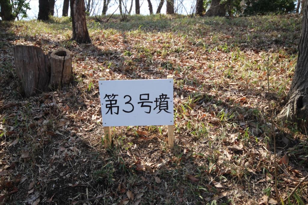 第3号墳_1