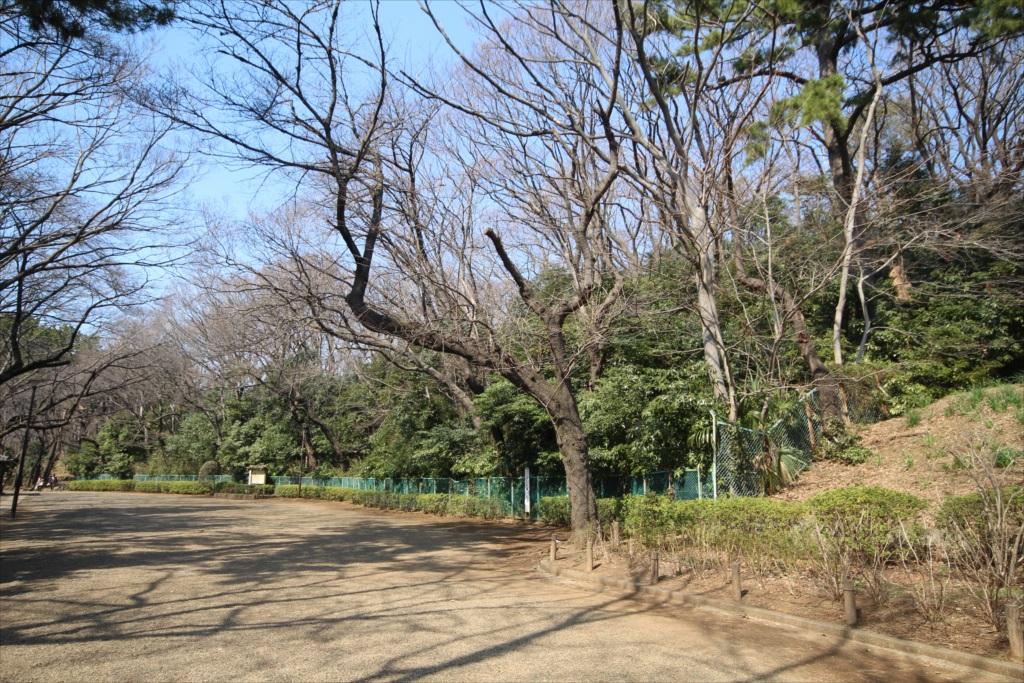 展望広場と亀甲山古墳_4