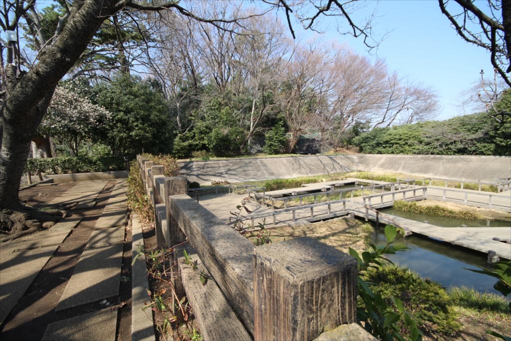 水生植物園と四季の野草園_1