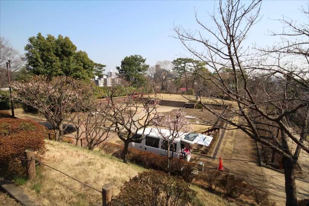 水生植物園と四季の野草園_2