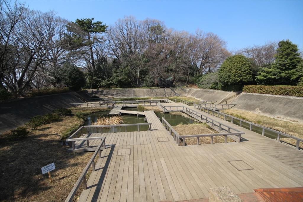 水生植物園と四季の野草園_3