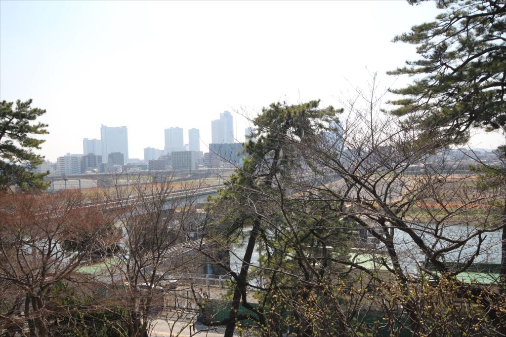 多摩川鉄橋などの眺望_1