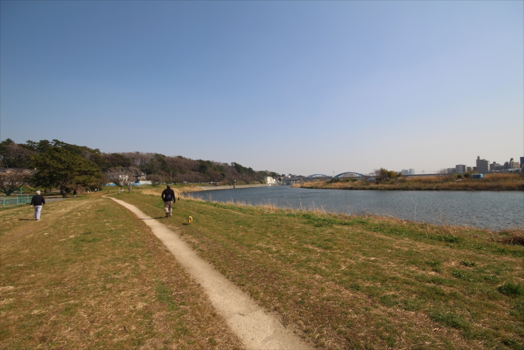河川敷からの辺りからの眺めは抜群_9