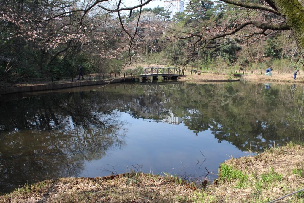 水生植物園_2