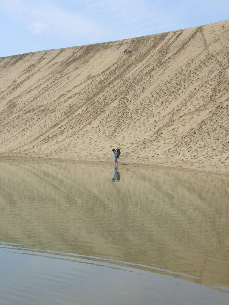鳥取砂丘 馬の背