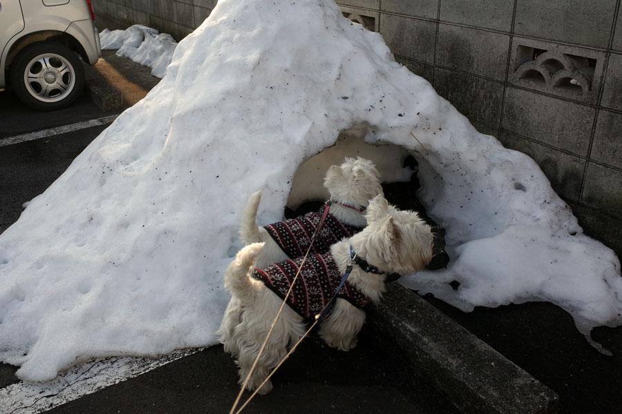 ienochikakunikamakuraatta1.jpg