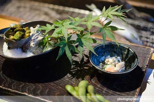 千葉の宿 広丞庵かのか千葉大多喜 夕食 ディナー 和食 炭火焼 川魚 口コミ ブログ3
