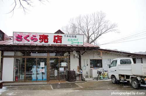 栃木県 那須塩原 千本松牧場 口コミ 駐車場無料 乗馬 ベーコン ソーセージ 観光 行楽1