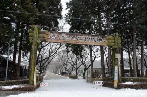 栃木県 那須塩原 千本松牧場 口コミ 駐車場無料 乗馬 ベーコン ソーセージ 観光 行楽9