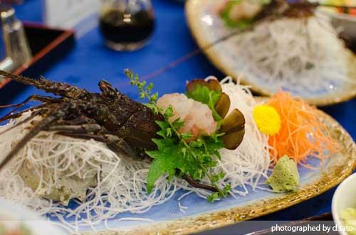 千葉県 いこいの村 館山 日帰り入浴 食事付きプラン じゃらん 口コミ クーポン8