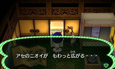 HNI_0039cde.jpg