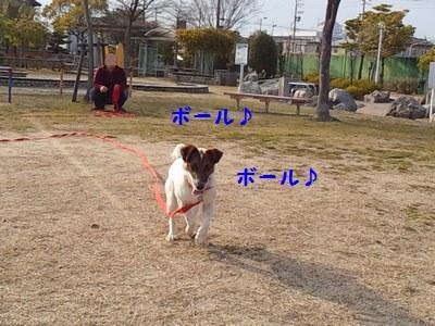 20140324002626e15.jpg