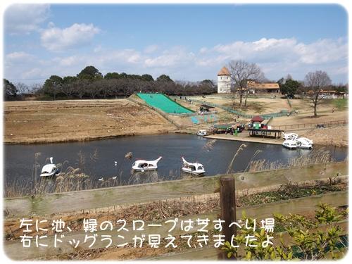 池、芝すべり場、ドッグラン