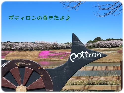 ポティロンの森