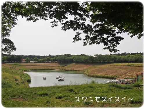 ポティロンの森の池