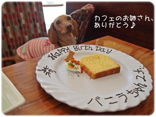 バニラとパウンドケーキ