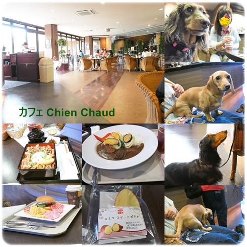 カフェ Chien Chaud