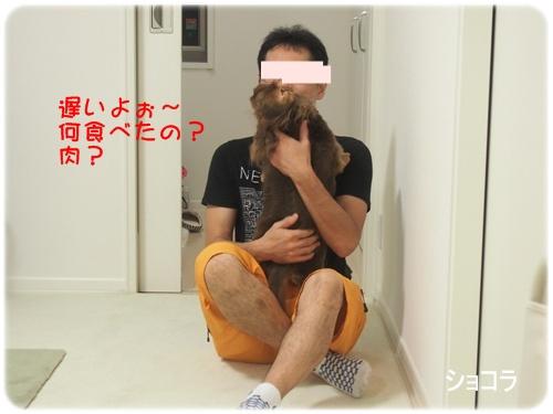 140810_4877.jpg