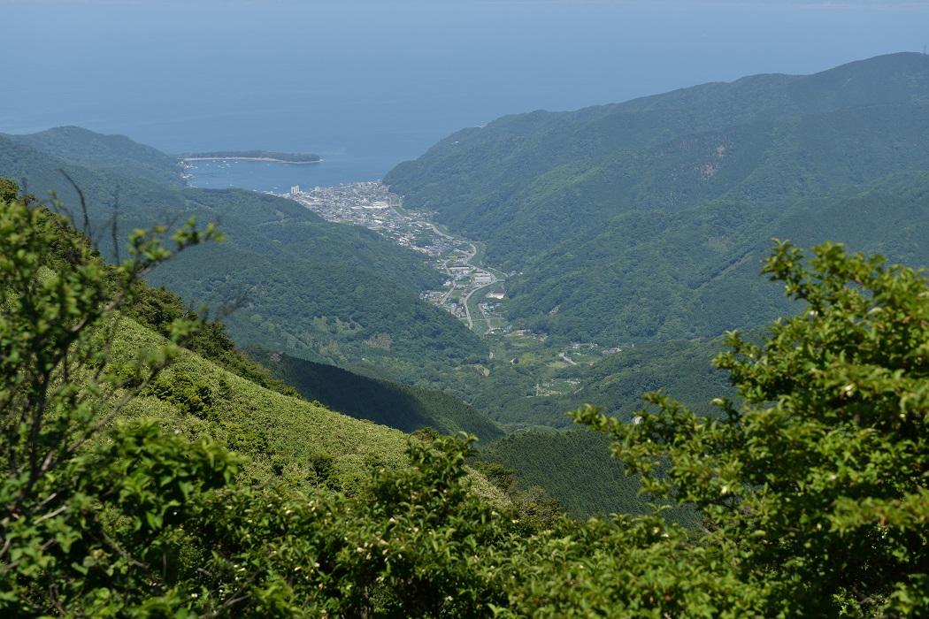戸田湾を見下ろす