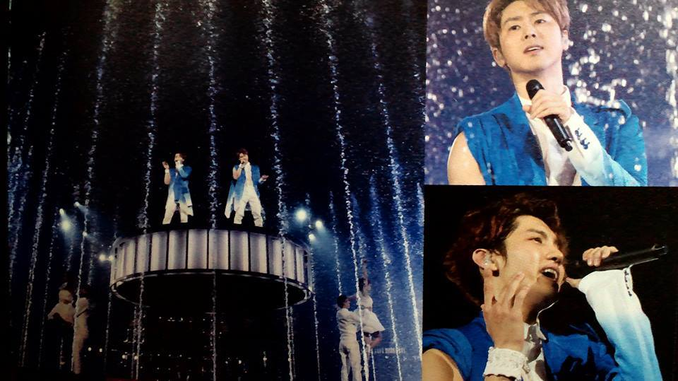 TohoTreeTour from 13