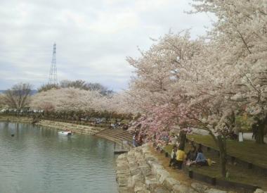 岩脇公園3