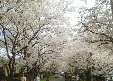 岩脇公園4