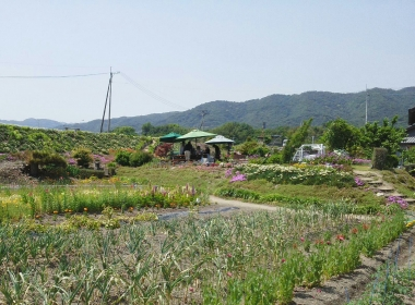 ガーデン4