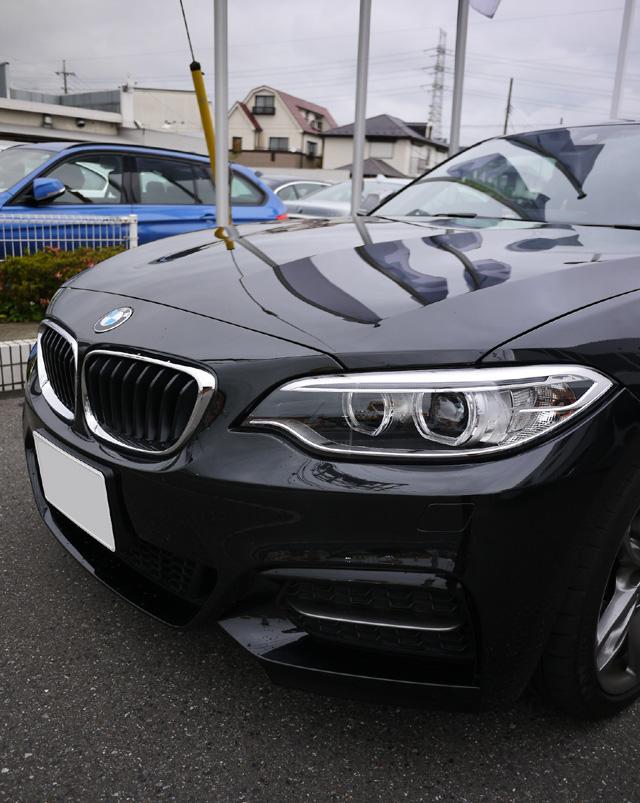 BMWM235i08.jpg