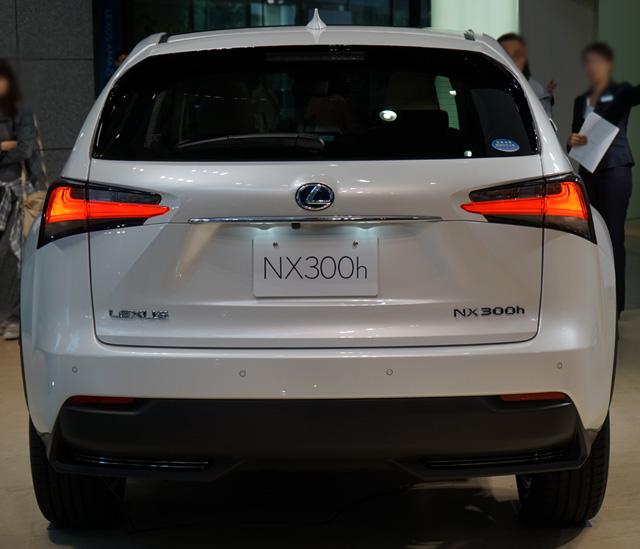 NX300h08.jpg