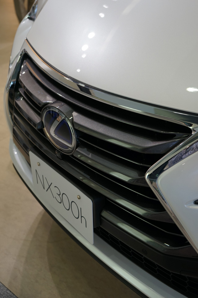 NX300h22.jpg